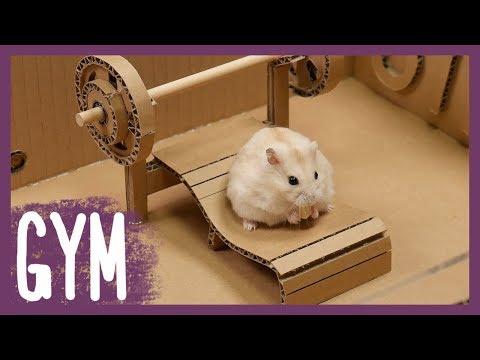 Hamster's GYM (Running machine)