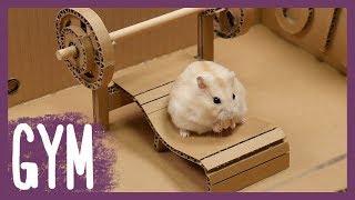 햄스터 전용 헬스장 (Hamster's GYM)
