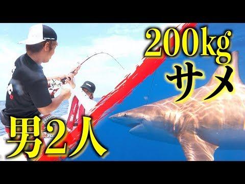 またもやサメ!しかも今度はド級!【200キロサメ討伐#1】
