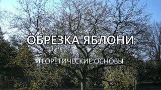 видео Обрезка яблонь | Дачное царство