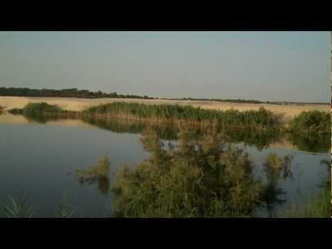 Touggourt le Lac de Merdjadja تقرت بحيرة مرجاجة