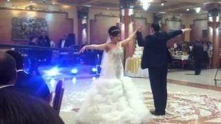 HRACH & HERMINE WEDDING 01.03.2014, surprise dance
