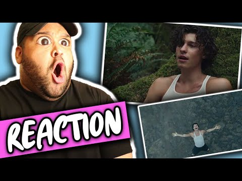 Shawn Mendes - Wonder (Music Video) REACTION
