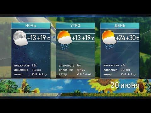 Прогноз погоды на 20 июня: дожди, грозы и на 5 градусов выше нормы