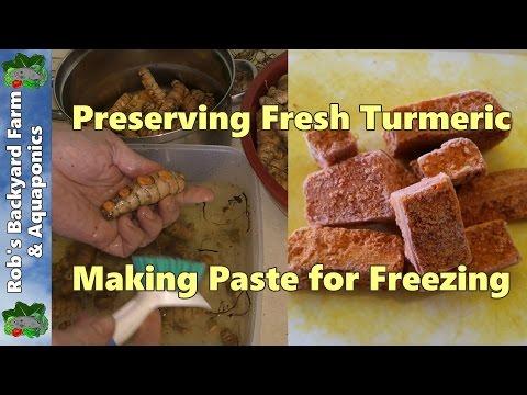 How to Preserve Fresh Turmeric.  Turmeric Paste for the Freezer.