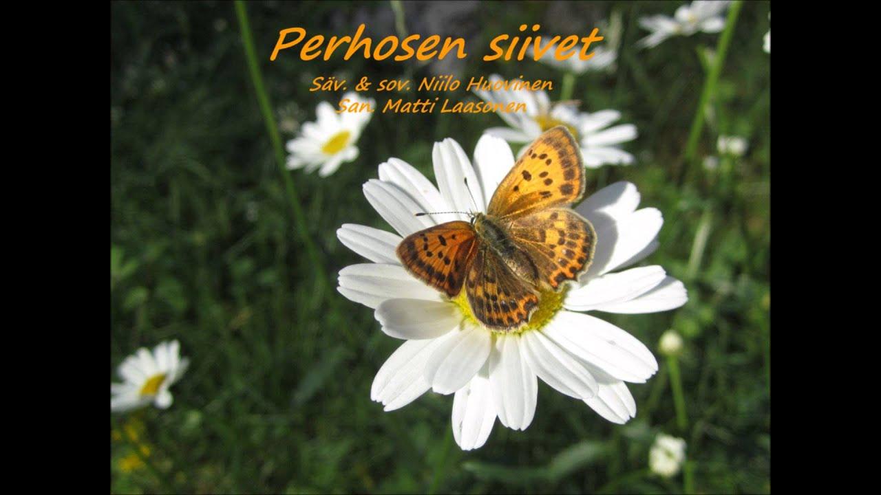 Perhosen Siivet