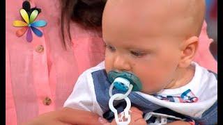 видео Мама для мам: Как подготовить ребенка к выходу в детский сад: 16 советов