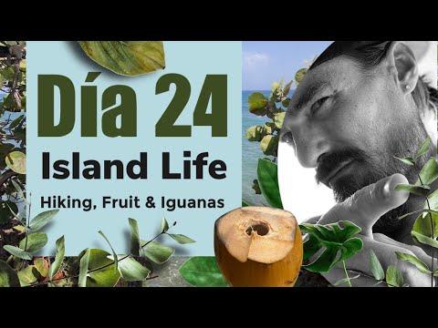hiking,-fruit-&-iguanas- -puerto-rico-vlog-24