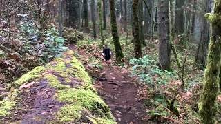 Trail Running Mount Douglas - Victoria, Bc - Feb 2 - Training Week 4