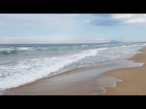 Ein Spaziergang am Nachmittag mit Käferиз YouTube · Длительность: 6 мин27 с