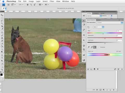 LEZIONE 05 La Modifica Dei Colori: Tonalità/Saturazione, Sostituisci Colore, Il Filtro Fotografico.