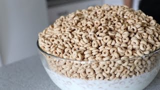 Massive Cheerios Challenge! (4000 Calories)