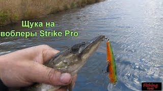 Ловля щуки на воблеры Strike Pro