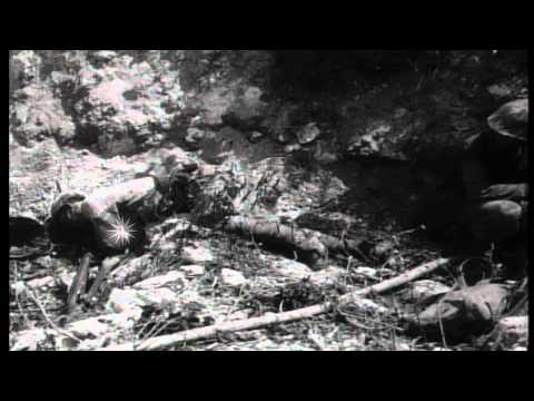 US Marines of 5th Marine Regiment, B Company advance in Peleliu, Palau during Wor...HD Stock Footage