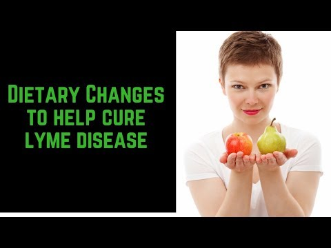 help-cure-lyme-disease-naturally-with-these-dietary-changes