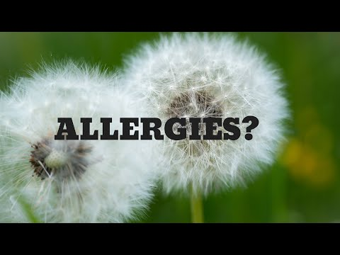 Best Essential Oils for Allergies!