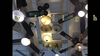 Ceiling fans at Menards in Indiana (slideshow)