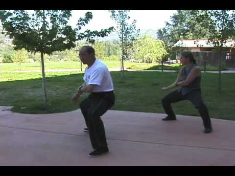 Internal Structure Testing: Chen Style Tai Chi wit...