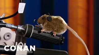 The Tidy Mouse Landed A Job At CONAN - CONAN on TBS
