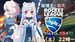 【ロケットリーグ】雑種犬と狛犬の楽しいボール遊び!!!【どまにシSIDE】