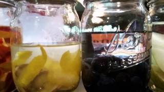 Vodka Infusion Day
