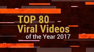 TOP 80 Viral Videos of the Year 2017 || ViralSnare
