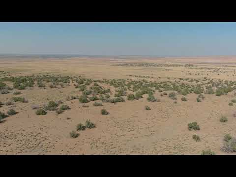 SOLD By Compass Land USA - 37.73 Acres – In St. Johns, Apache County AZ