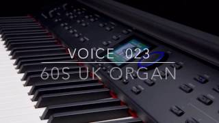 Williams Symphony Grand Voice 023 60s UK Organ performed by Kris Nicholson