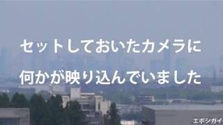 ブルーインパルスを3か所から撮影。入間の発進。横田基地。武蔵小杉上空。ところで固定カメラの横田上空に何かが写っていました。