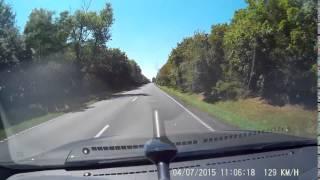 Uwaga na jelenie na drodze