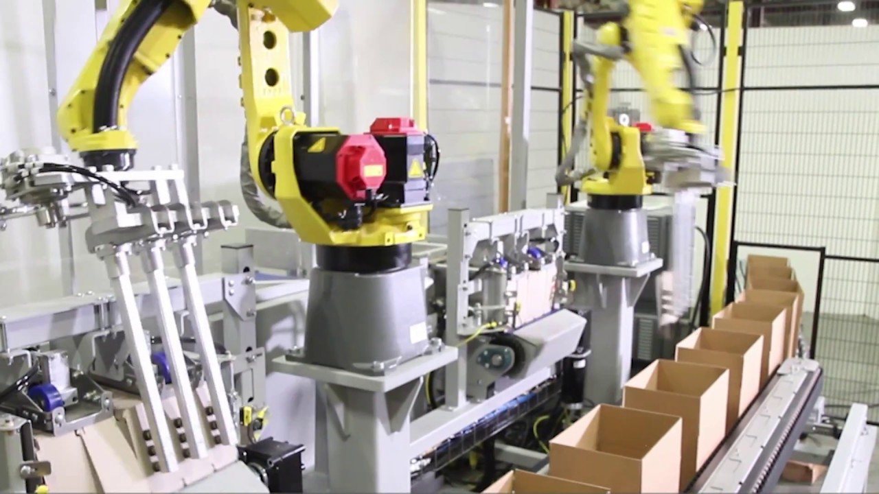 Robotic Partition Inserter (RPI) with High Speed FANUC Robots - Pearson  Packaging Systems