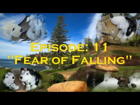 "Webkinz Signature Island - Season: 2 Episode: 11 ""Fear of Falling"""