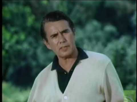Murder Once Removed 1971 Barbara Bain & John Forsythe