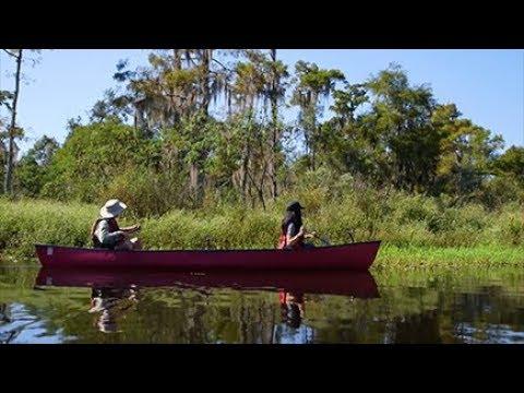 Louisiana Wetlands: Keeping it Local in Covington