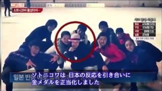 【フィギュア】ソトニコワ「韓国人だけが怒ってる」韓国メディアの反 ソトニコワ 検索動画 19
