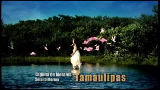 Laguna la Morales, la Pesca en Soto la Marina, Tamaulipas una Estrella más del Bicentenario