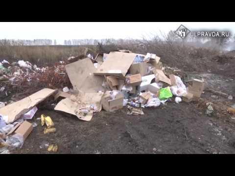 Миллионы – в мусор. Для ликвидации свалки у Красного Яра требуется 650 млн рублей