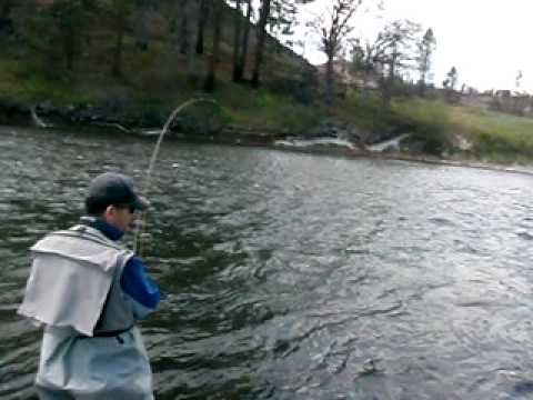 Fly fishing hat creek near burney california w guide for California out of state fishing license