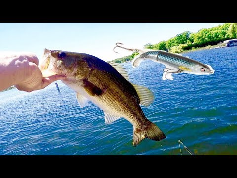 Top Water Bass Fishing with the Whopper Plopper