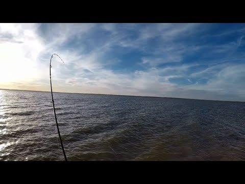 Windy Waranga Basin Twilight Fishing For Redfin Perch