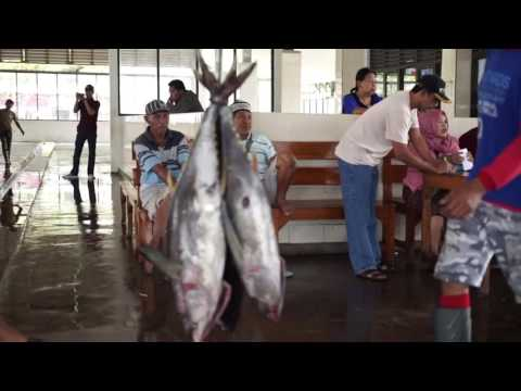 Tuna Indonesia (Fish and Auction markets)