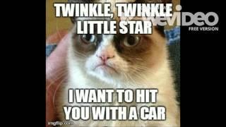 Grumpy Cat Sayings