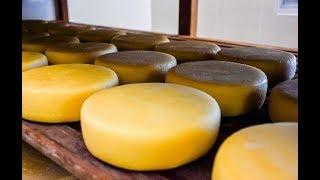 Como fazer queijo coalho Curado na Tábua!!!