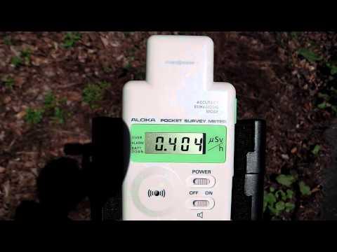 群馬の放射線測定・沼田市21世紀の森その2(高線量)