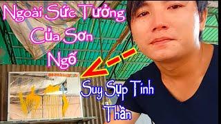 CHẮC CÓ THỂ SƠN NGỐ SẼ NGHỈ LÀM YOUTUBE |✅ Sơn Ngố Vlog