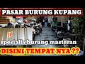 Sidak Kios Pasar Burung Kupang Surabaya Jawa Timur  Mp3 - Mp4 Download