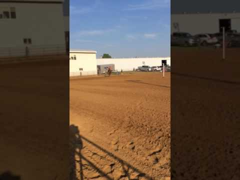 July 23, 2017 - Monroe County Fairgrounds, Waterloo IL Fair - Jocelyn & Annie Pole Bending Race