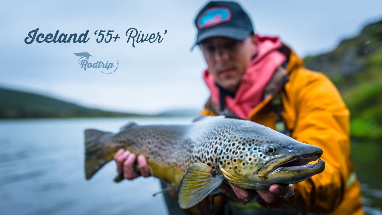 Big brown trout fly fishing in iceland with rodtrip for Brown trout fly fishing
