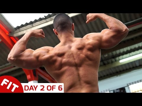 BACK & TRICEPS - JUSTIN ST PAUL  DAY 2 OF 6