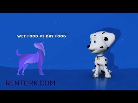Wet food or dry food ? Rentork, your Petfood Web App